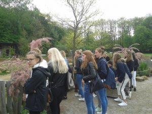 nl-austausch-1
